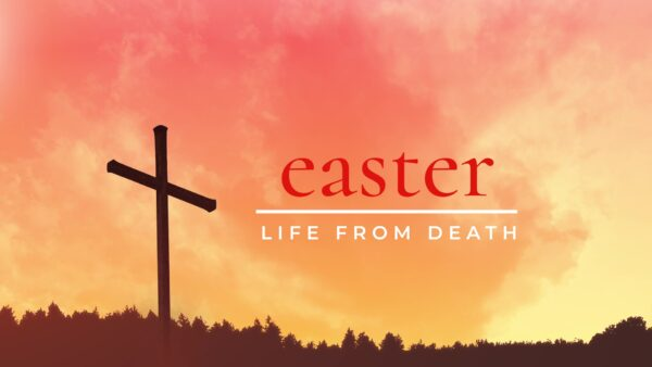 An Easter Of New Beginnings Image